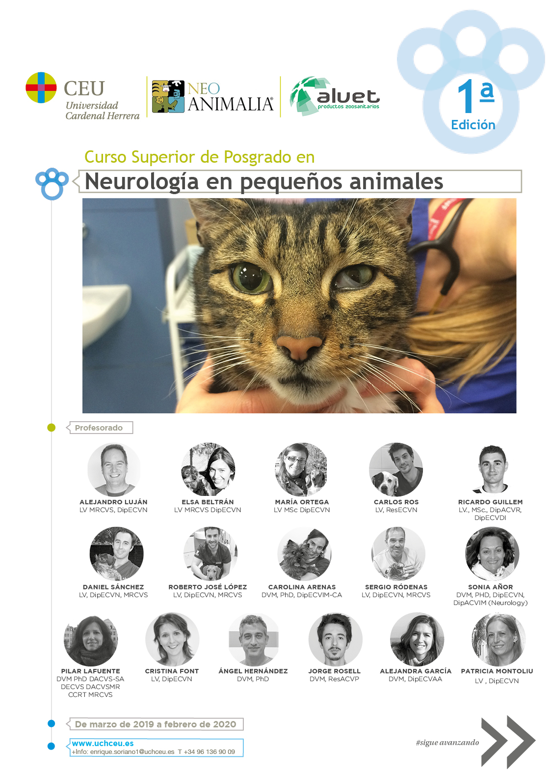 Curso Superior De Posgrado En Neurologia En Pequeños